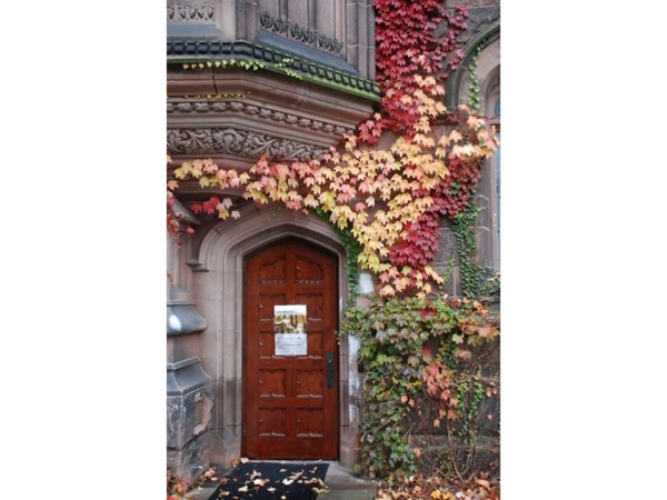 Picture of an ivy-covered doorway
