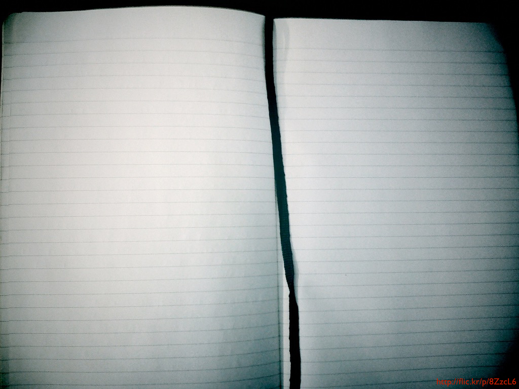 A diary open to blank, lined pages.