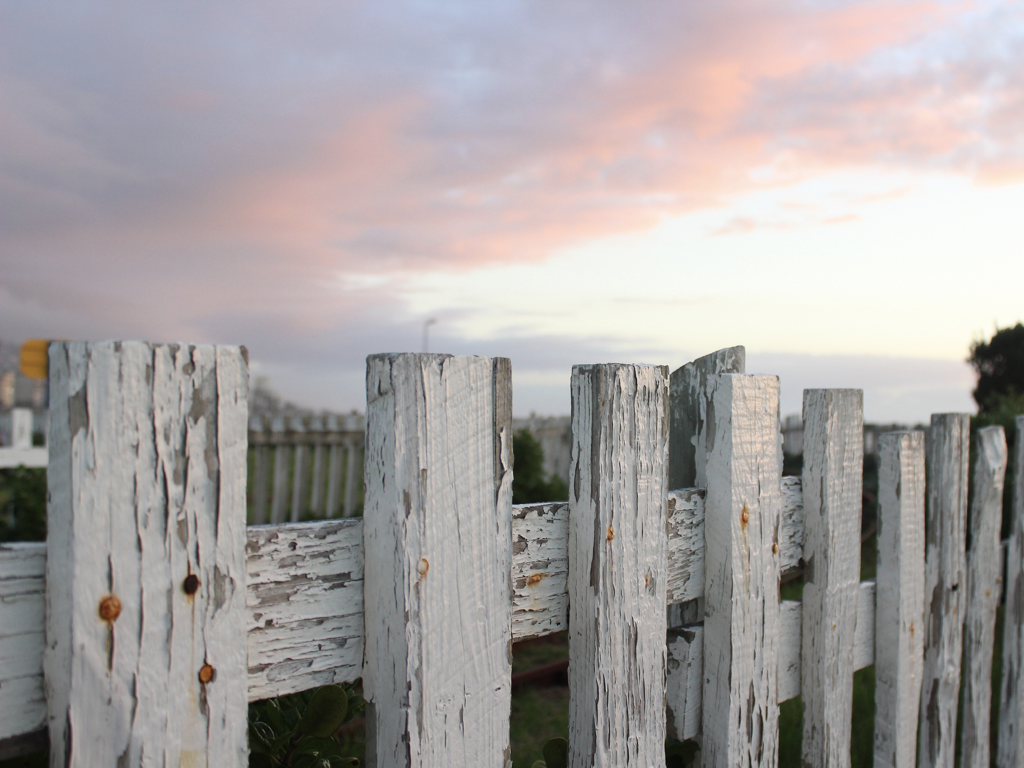A weathered white picket fence.